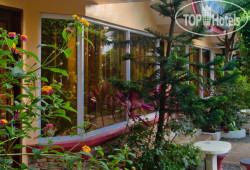 Deep Forest Garden Inn No Category