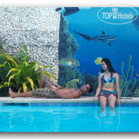 Фото отеля Love's Beach and Dive Resort No Category