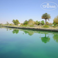 Фото отеля One To One Hotel And Resort Ain Al Fayda 4*
