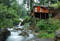 Blue Ginger Wayanad Resorts 3*