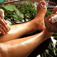 Фото отеля Zamorins Ayurvedic Retreat No Category