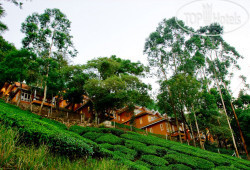 Tea Valley Resort 3*