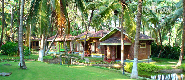 Kairali Ayurvedic Healing Village No Category