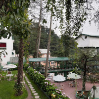 Фото отеля Honeymoon Inn Hotel 4*