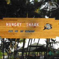 Фото отеля Hungry Shark Guesthouse No Category