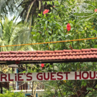 Фото отеля Curlies Guest House No Category