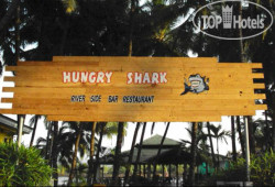 Hungry Shark Guesthouse No Category