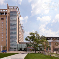 Фото отеля Best Western Harbin Fortune Hotel 4*