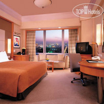 ���� ����� The Kerry Centre 5* � ������, �����