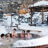 Фото отеля Beijing Shun King Spa Hotel No Category