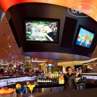 Фото отеля Hard Rock Hotel & Casino 4*