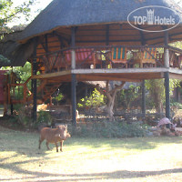Фото отеля The Elephant Camp Victoria Falls 4*