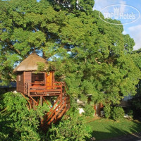 Фото отеля Tree Lodge Mauritius No Category