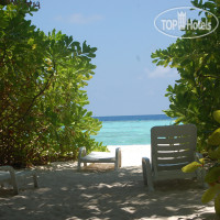 Фото отеля Vaali Beach Lodge Maldives 3*
