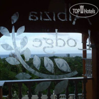 Фото отеля Albizia Lodge Guest House No Category