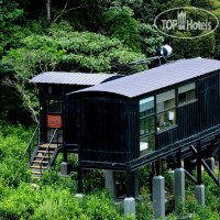 Фото отеля Rainforest Ecolodge 4*