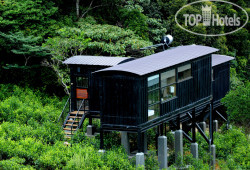 Rainforest Ecolodge 4*
