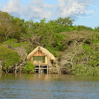 Фото отеля Juma Amazon Lodge 4*