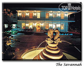 The Savannah 4*