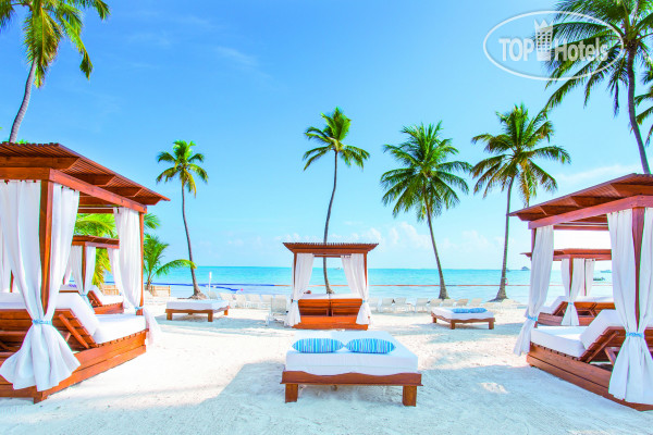 ���� Be Live Collection Punta Cana 5* / ���������� / ����� ����