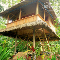 Фото отеля Copa de Arbol Beach and Rainforest Resort No Category