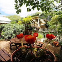 Фото отеля Jacaranda Guest House No Category