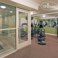 Фото отеля Holiday Inn Hotel & Suites San Mateo-San Francisco Sfo 3*
