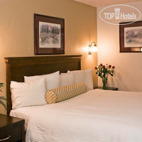Фото отеля Baechtel Creek Inn & Spa 3*