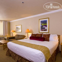 Фото отеля Best Western Plus Dry Creek Inn 3*