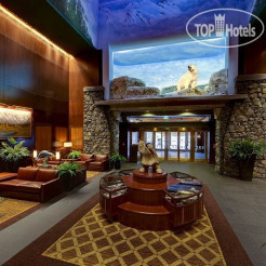 Отель Alyeska Resort Girdwood