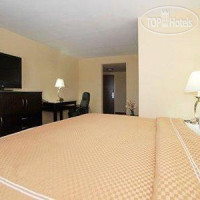 Фото отеля Comfort Suites Palm Bay 2*