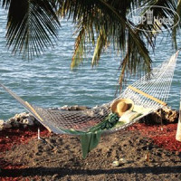 Фото отеля Bluegreen Vacations Hammocks at Marathon an Ascend Resort 3*