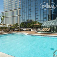 Фото отеля Hilton Tampa Downtown 4*