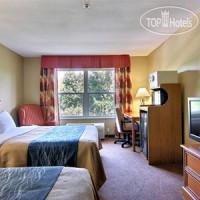 Фото отеля Comfort Inn & Suites I-95 - Outlet Mall 3*
