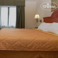 Фото отеля Comfort Suites Fort Pierce 3*