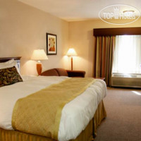 Фото отеля Best Western PLUS CottonTree Inn 3*