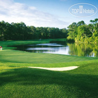 Фото отеля Hilton Head Marriott Resort & Spa 4*