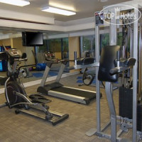Фото отеля Comfort Inn South Forest Beach 3*