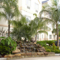 Фото отеля Best Western Plus Atascocita Inn & Suites 3*