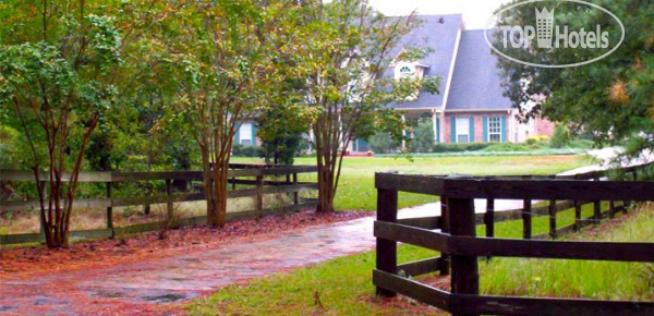 ���� 15 Acres Retreat 3* / ��� / �����
