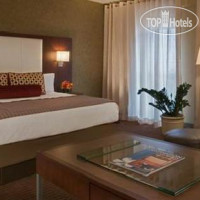 Фото отеля Hyatt Regency Airport DFW 4*