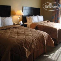 Фото отеля Comfort Inn & Suites Near the AT&T Center 2*