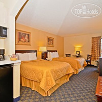 Фото отеля Comfort Inn & Suites DFW Airport South 2*