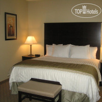 Фото отеля La Quinta Inn & Suites San Antonio The Dominion 2*