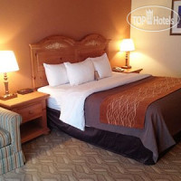Фото отеля Comfort Inn Downtown Salt Lake City 3*