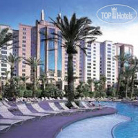Фото отеля Hilton Grand Vacations Club at the Flamingo Hilton 3*