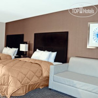 Фото отеля Comfort Inn & Suites Zoo SeaWorld Area 2*