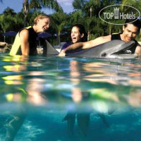 Фото отеля Hampton Inn Closest to Universal Orlando 3*