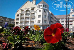 Disney's Yacht Club Resort 4*