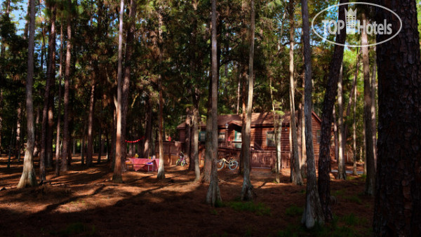 The Cabins at Disney's Fort Wilderness Resort No Category